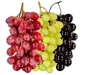15257772-nature-morte-noir-vert-rouge-tas-de-raisins-de-pr-s-sur-fond-blanc-isol