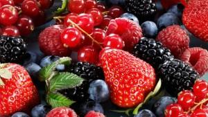 fructele-de-padure